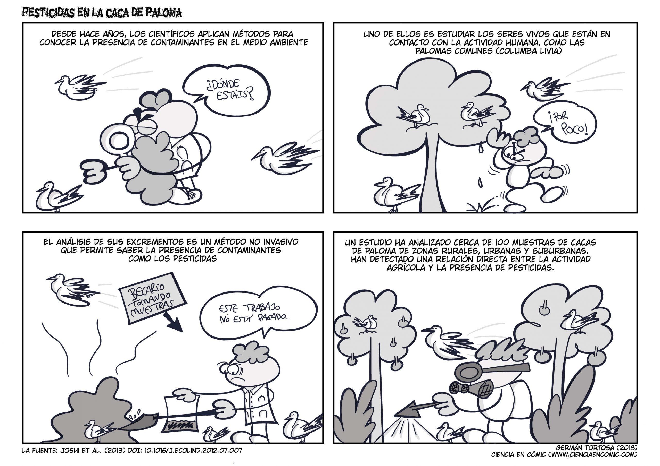 07) Divulgación: La caca de Paloma y la contaminación