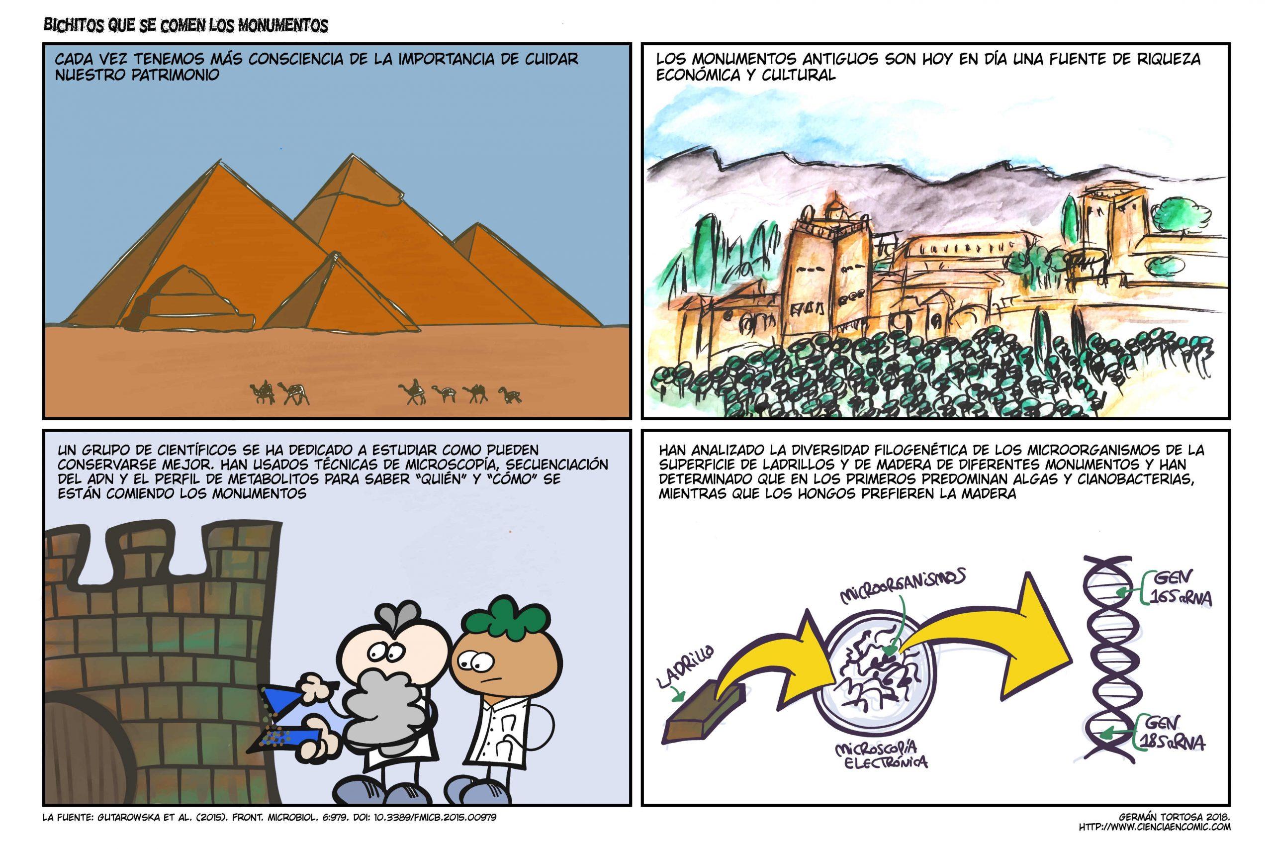 08) Divulgación: Bichitos que se comen los monumentos